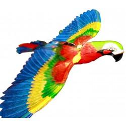 PAPUGA LATAJĄCA WOKÓŁ KOLOROWA NA BATERIE E0229 EMAJ ptak SUPER PREZENT EMAJ